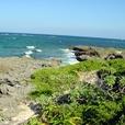 Okinawa2